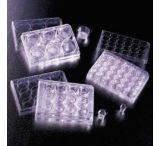 BD Falcon Cell Culture Inserts, Sterile, BD Biosciences 353097 Translucent Inserts