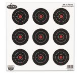 Birchwood Casey Dirty Bird Splattering Targets 3in. Round