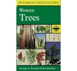 Houghton Mifflin: Peterson Field Guides