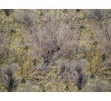 Remington Rem Wrap Adhesive Camouflage For Your Gear Mossy Oak Brush 17359