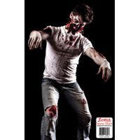 BenchMaster Zombie Shooting Targets - 10 Packs