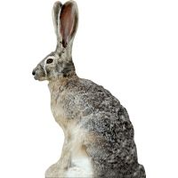 Extreme Dimension Wildlife Calls Phantom HD Decoy - Jack Rabbit