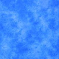 Lastolite 10'x24' Washable Muslin Background - Florida LL LB7846