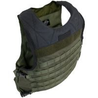 Tactical Assault Gear ACC Aggressor Armor Plate Carrier