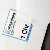 Whatman Grade No. 1 Chr Thin Chromatography Paper, Cellulose, Whatman 3001-917 Sheets (cm x cm)