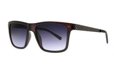 0f28cc77ec Anarchy Ronix Sunglasses