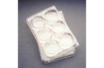 BD Falcon Multiwell Flat-Bottom Plates with Lids, Sterile, BD Biosciences 353046