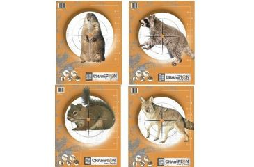Champion Target Champion Practice Targets 10 Pack 45781