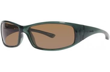 Columbia Auburn Bifocal Prescription Sunglasses CBAUBURNPZ511 - Frame Color Transparent Green