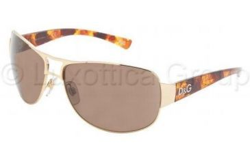 10143c22d34 D G Sunglasses DD6056 069 73-6415 - Gold Brown