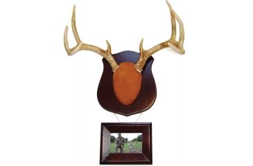 Do All Outdoors Cam2 True Classic Antler Mount W Frame