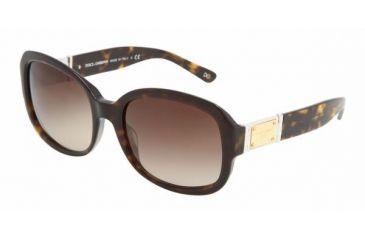 Dolce & Gabanna DG4086 #502/13 - Havana Brown Gradient Frame