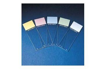 Erie Scientific Colorfrost Plus Microscope Slides, Erie Scientific 8951PLUS