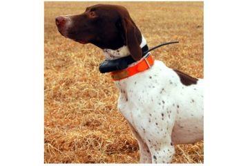 Garmin Dog Tracking Systems GPS Astro®