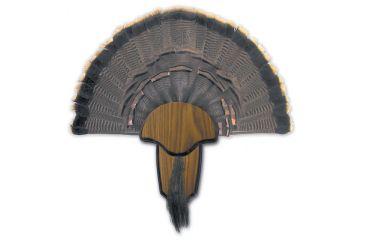Hunter's Specialties Turkey Tail/Beard Mount Kit 00849