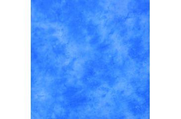 Lastolite 10x24 Washable Muslin Background, Florida LLLB7846
