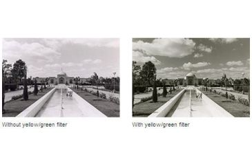 Leica Yellow-Green Filter