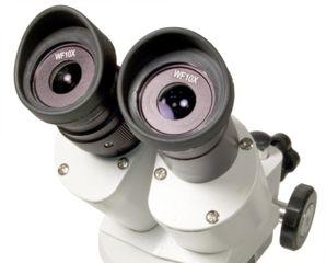 Levenhuk 3ST Microscope, White, Medium 35323