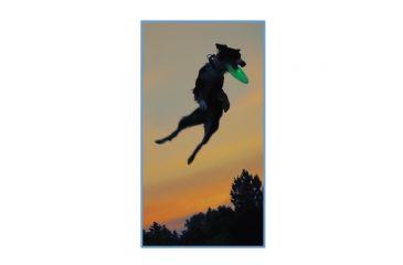 Nite Ize Flashflight Dog Discuit LED Illuminated Flying Disc, Disco FFDD-07-R8