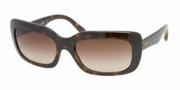 Prada PR23MS #2AU6S1 - Havana Brown Gradient Frame