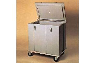 Tegrant Thermosafe Dry Ice Storage Chest, ThermoSafe Brands 301 Dry Ice Storage Chest, Non-Electrical