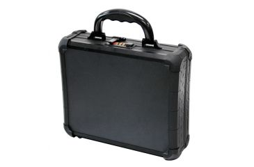 Tz Case Tzm0011 Bd Single Pistol Black Case