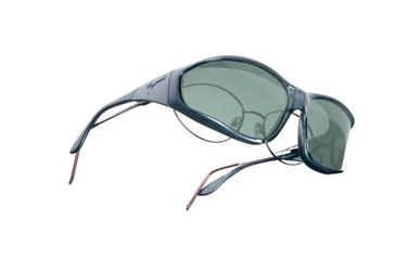 Vistana Steel Frame L Gray Polare Lens Sunglasses W304G