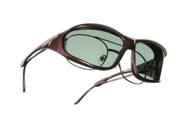 Vistana Burgundy Frame L Gray Polare Lens Sunglasses W309G
