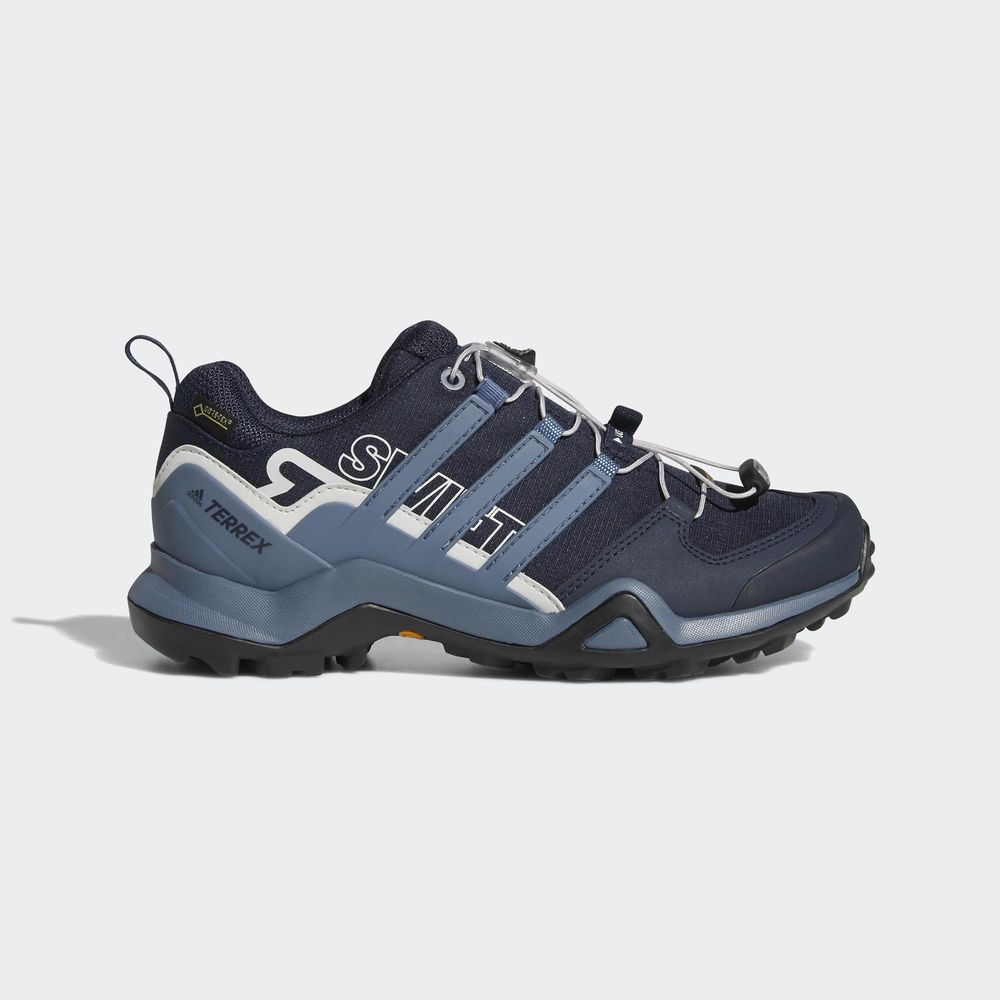 Adidas Outdoor Terrex Swift R2 GTX Hiking Shoe Women's