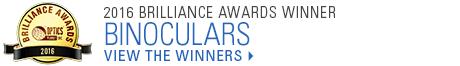2016 Brilliance Awards Winner