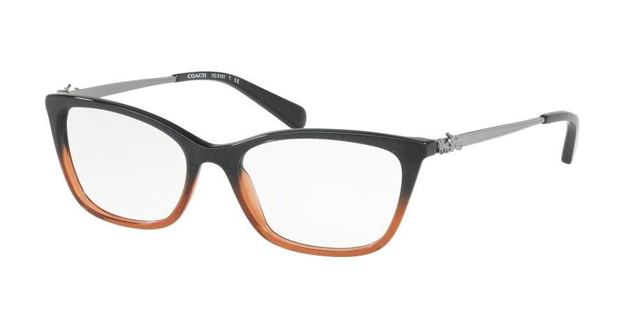 d380bbe7c1 Coach HC6107 Eyeglass Frames