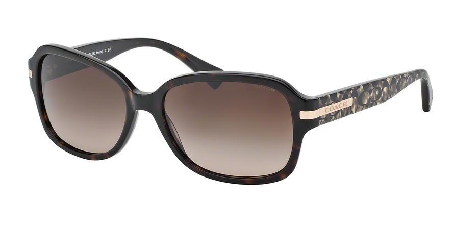 b4f97be6b5 Coach L082 AMBER HC8105 Sunglasses