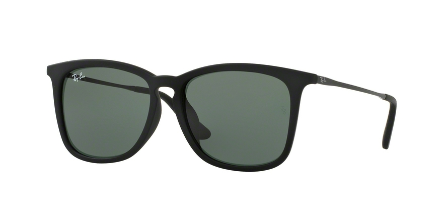0be536083b Ray-Ban RJ9063SF Sunglasses
