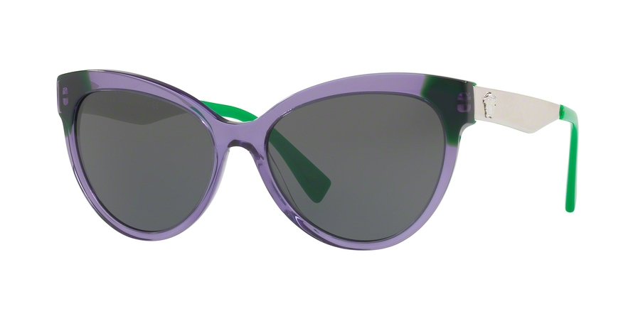 16828ed4739d Versace VE4338 Sunglasses